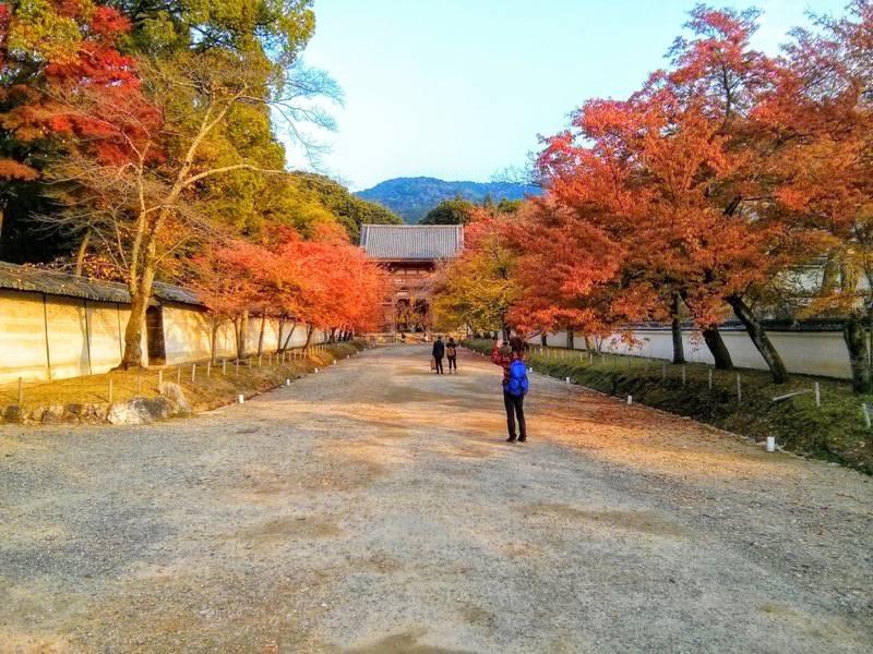 醍醐寺 西大門前の参道