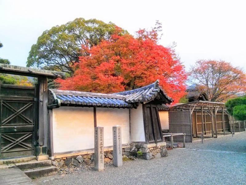醍醐寺 三宝院の紅葉2