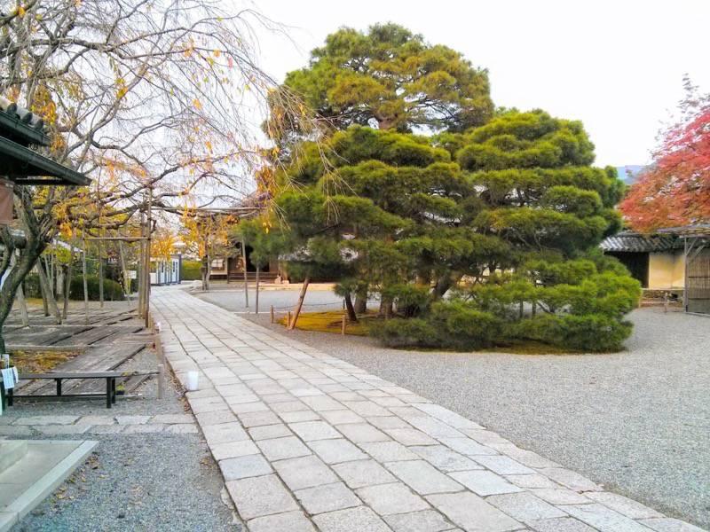 醍醐寺 三宝院1