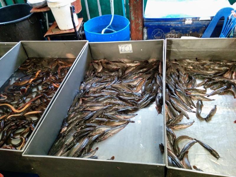 16鮮魚店