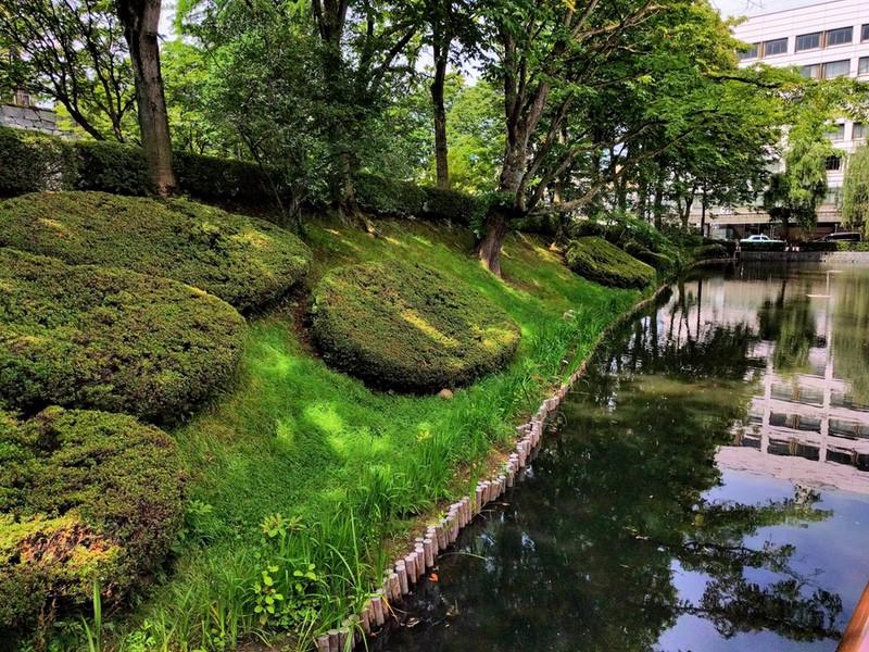 01亀ヶ池