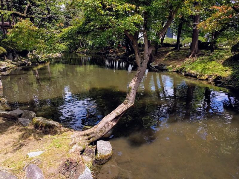 35鶴ヶ池