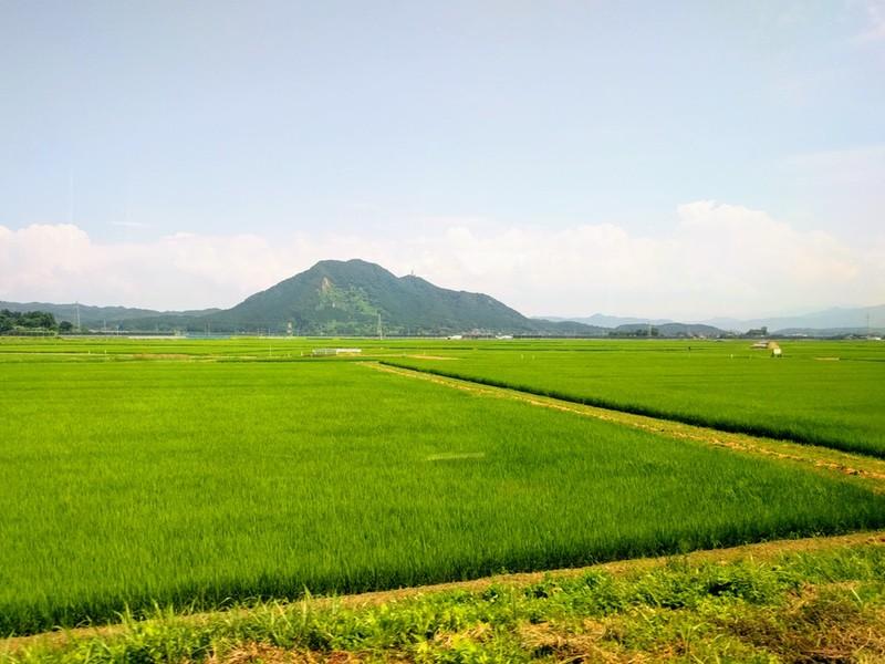 41田園風景