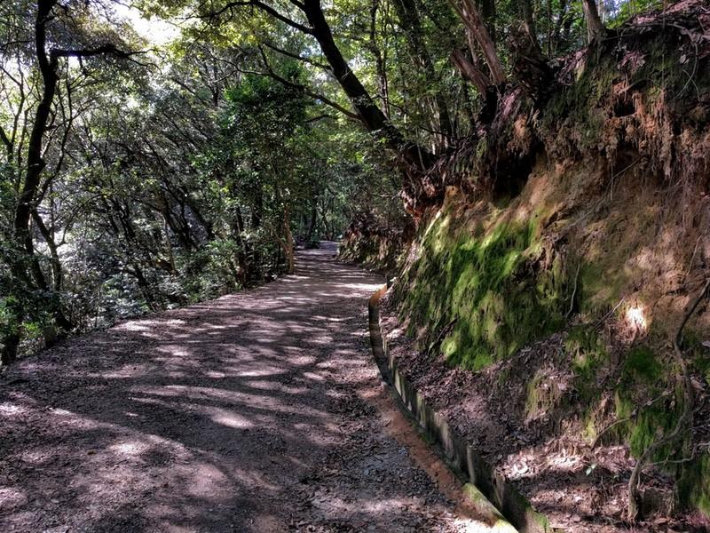 27登山道