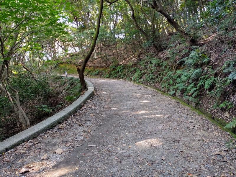 29登山道
