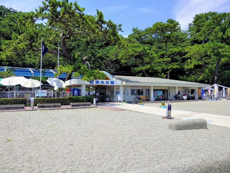 12桂浜水族館