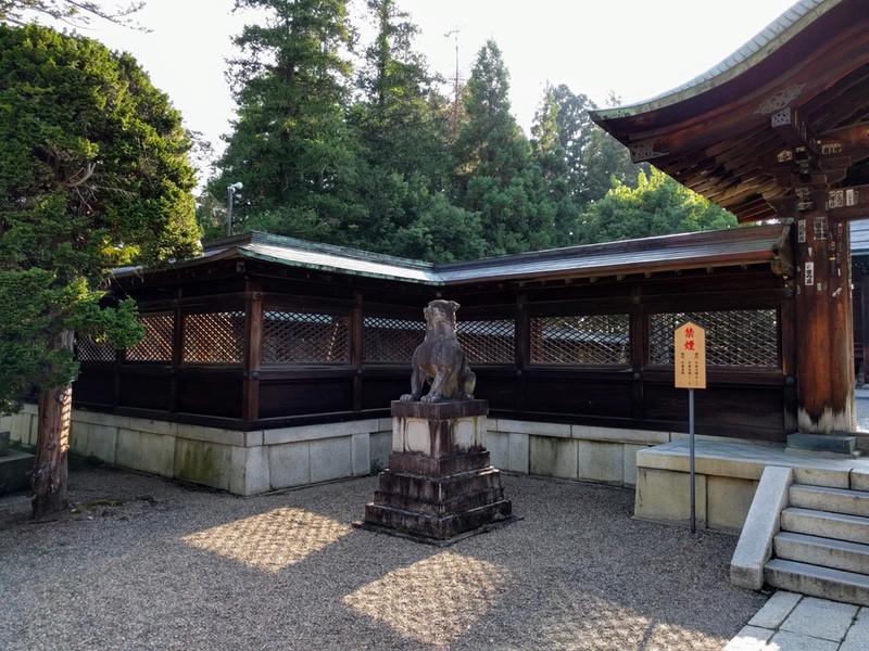 22上杉神社狛犬さん