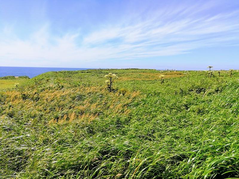 07スコトン岬方面