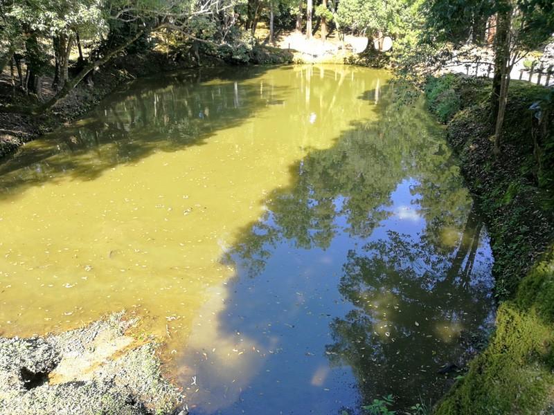 29馬洗池