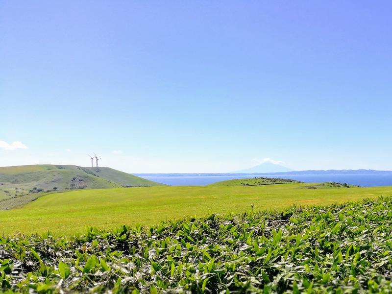 06宗谷丘陵 利尻富士