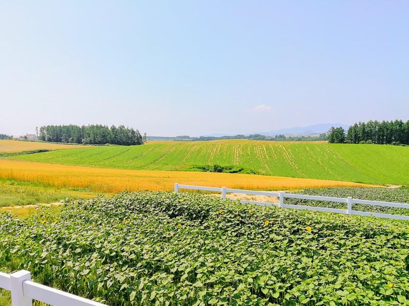 04新栄の丘