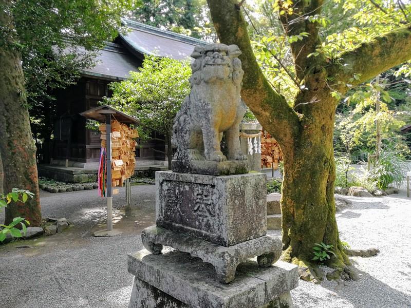 25報徳二宮神社狛犬さん