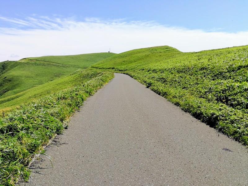 17スコトン岬方面 山道