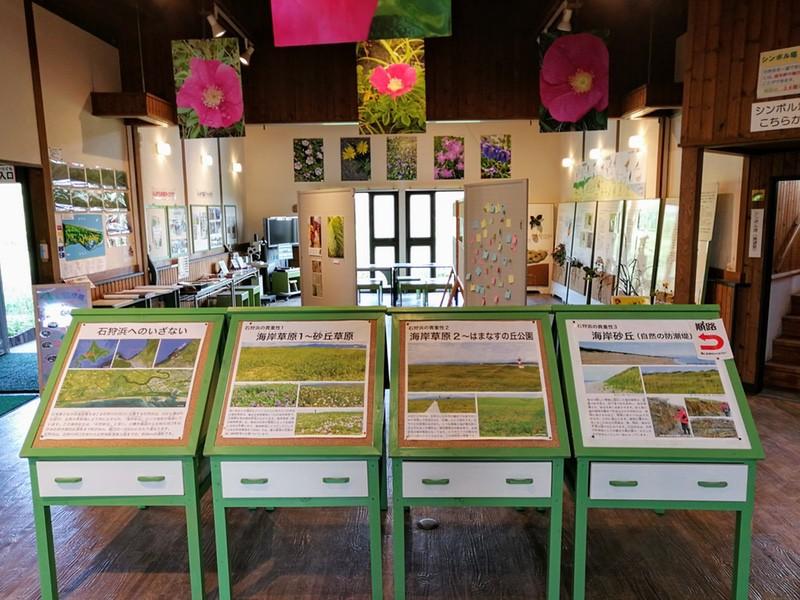 25石狩浜海浜植物保護センター