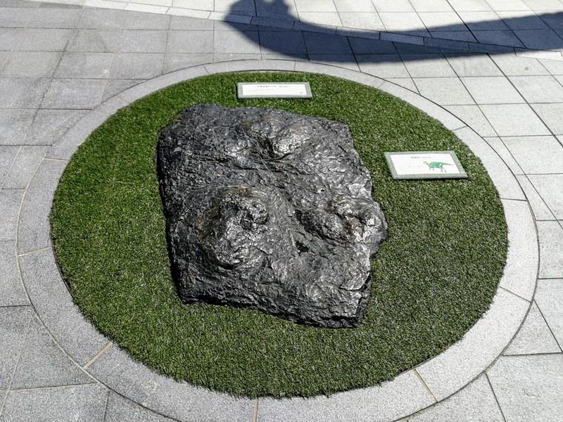 19足跡の化石